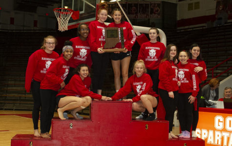 RHS gymnastics team takes Sectional title