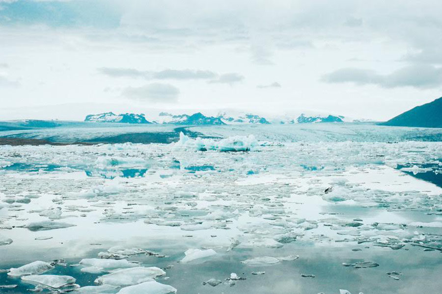 Because of the ocean heating up dramatically sea ice is melting. Polar bears need the ice for hunting because without it they can not catch seals.
